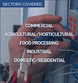 Sectors Covered